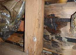 地震後 ・クロスにひび割れ、建具にズレ、または開閉が困難に