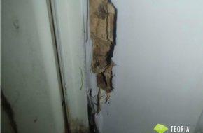 浴室ドア枠のシロアリ被害