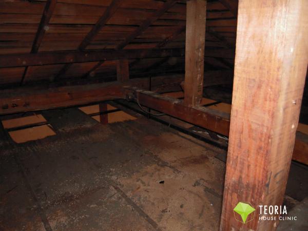 小屋裏の糞